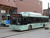 Studentenbus zwischen Frankfurt und Słubice