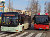 Midibus 442 und Standardbus 434
