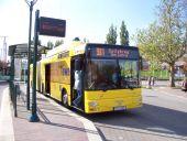 Totalreklame am Gelenkbus 538